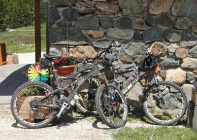 Conseria - biker