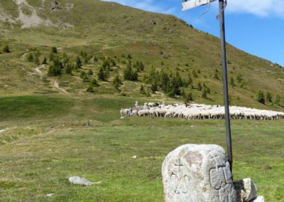 Passo - 5 - Croci (2)
